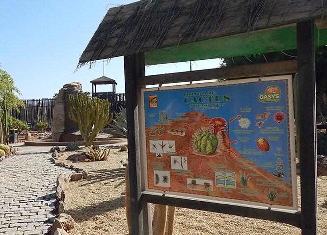 Oasys MiniHollywood cartel en la entrada del Museo de Cactus