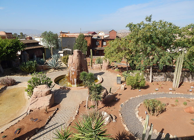 Oasys MiniHollywood Museo de Cactus vista aérea