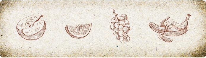Frutas variadas que forman parte de la alimentación del Calao de Mejilla plateada